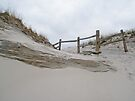 Sand Dune and Split Rail Fence by MotherNature