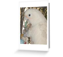 MARGARET AT PLAY Greeting Card