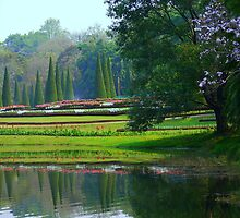 Kandawgyi National Gardens by Brian Bo Mei