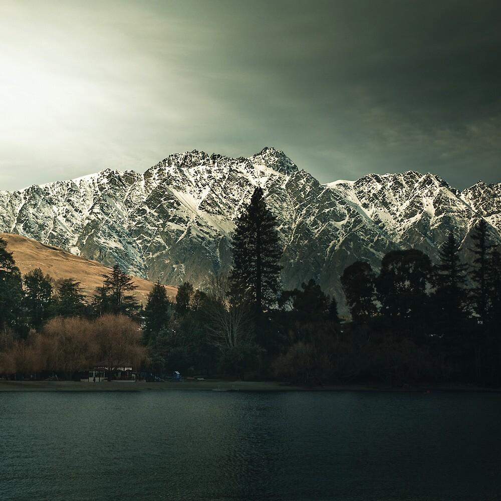 Dark Trees - New Zealand Landscape by Cubagallery