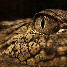Crocodile Skin by Raychel