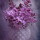 The fragrance of lilac by Myillusions
