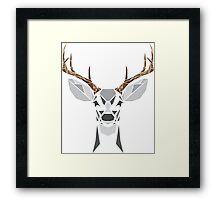 Bucky Framed Print