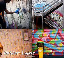 Hosier Lane, Melbourne by Cheryl Ridge
