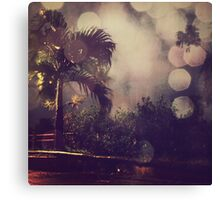 Palm tree and the night Canvas Print