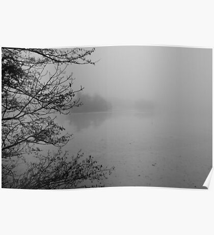 Eastwell Lake in winter 1 Poster