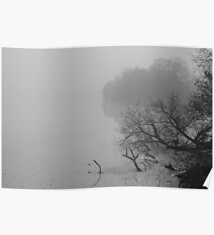 Eastwell Lake in Winter 2 Poster
