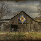 Dilapidated Beauty by Christine Annas