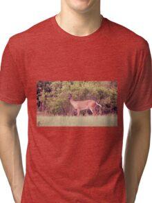 In The Backyard Tri-blend T-Shirt