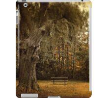 Autumn Respite iPad Case/Skin