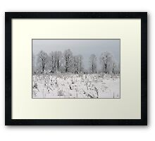 Grassland in winter time Framed Print