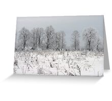 Grassland in winter time Greeting Card