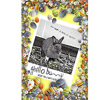 Ghetto Bunny Easter Greetings Photographic Print