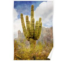 Saguaro Cactus in Lost Dutchman State Park Poster