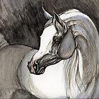 grey arabian horse painting by tarantella