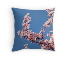 Spring Blue Sky Pink Tree Blossom Flowers Baslee Troutman Throw Pillow