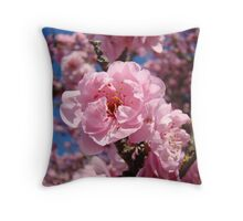 Beautiful Spring Tree Blossom Flower Blue Sky Baslee Troutman Throw Pillow