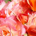 Rose Bouquet Orange Pink Roses Floral Gaden Baslee Troutman by BasleeArtPrints