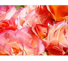 Rose Bouquet Orange Pink Roses Floral Gaden Baslee Troutman Photographic Print