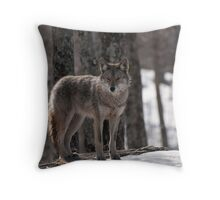 A Timid One Throw Pillow