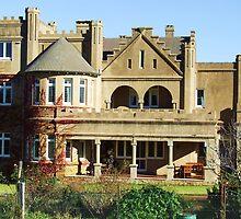 A Grand House by Liza Barlow