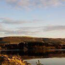 A Sunset Stroll by Lynne Morris