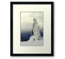 """A Blast of Winter"" Framed Print"