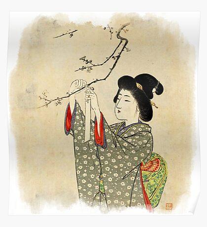Japanese sakura tree Poster