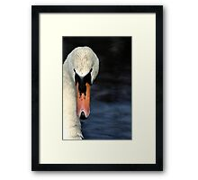 Looking at you... only you... Framed Print