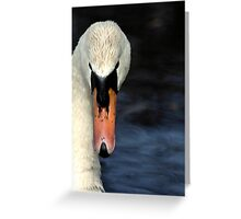Looking at you... only you... Greeting Card