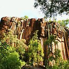 Sawn Rocks, Narrabri NSW Australia  by Liza Barlow