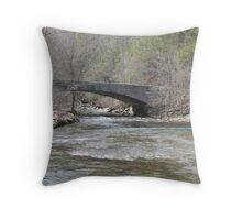 Mountain Water Throw Pillow