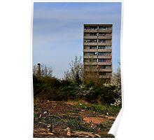 A Derelict View - Burgess Park, Southwark Poster