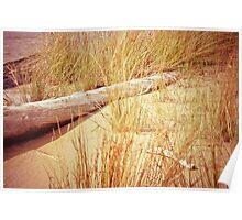 Lake Superior Beach Poster