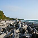 Pebble Beach Panorama by TingyWende
