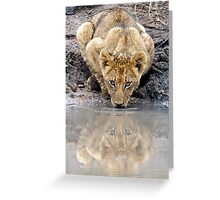 I See You....Twice Greeting Card