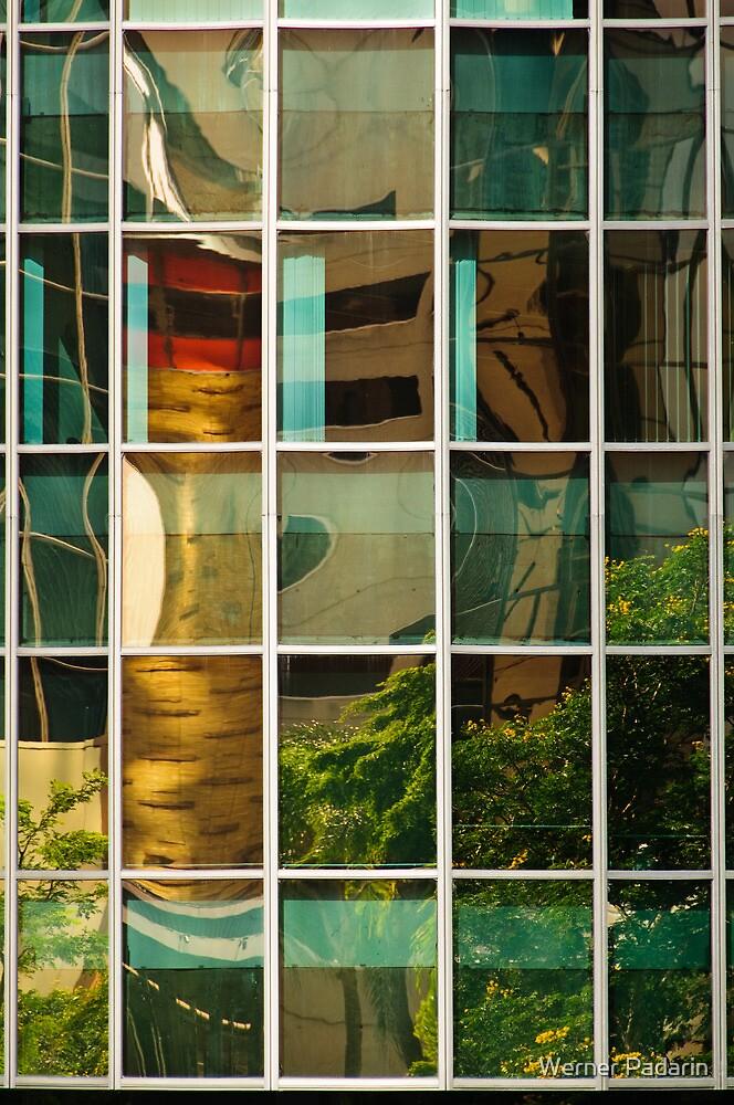 Reflecting Charlotte 2 by Werner Padarin