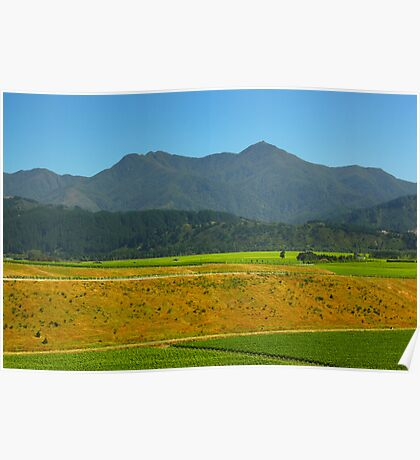 New Zealand Plantation Poster