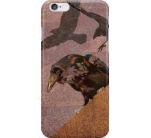 Grimey Crows iPhone Case/Skin
