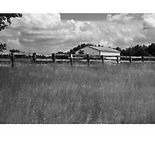 field & house Photographic Print
