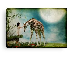Wonder..... Canvas Print