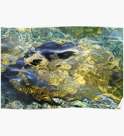 Rockpool Poster