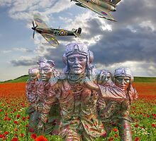 A Salute To The Few -  The Battle of Britain 75  by Colin  Williams Photography