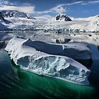 Beautiful Antarctica by Robyn Lakeman