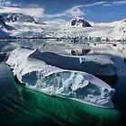 Beautiful Antarctica by Robyn Lakeman