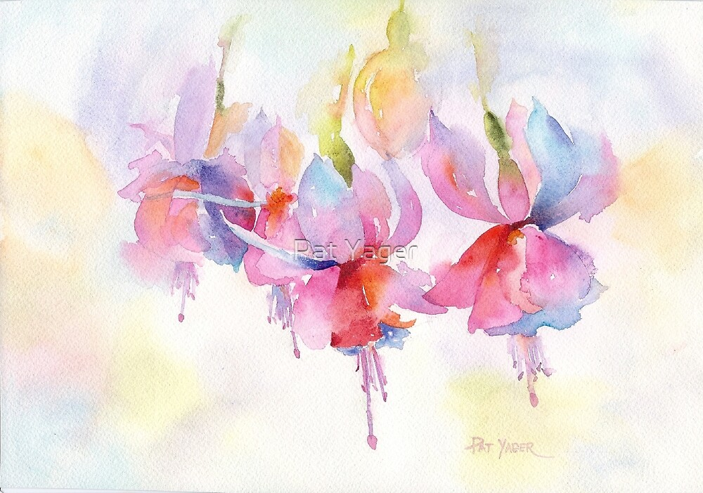 Fuchsia Watercolor by Pat Yager
