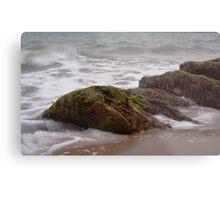 Sand, Sea, Seaweed Metal Print