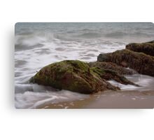 Sand, Sea, Seaweed Canvas Print