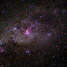 Eta Carina Nebula by Murray Wills