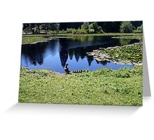 duck family - bedgebury national pinetum and forest Greeting Card